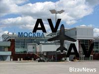 Московским аэропортам угрожает нашествие пернатых.